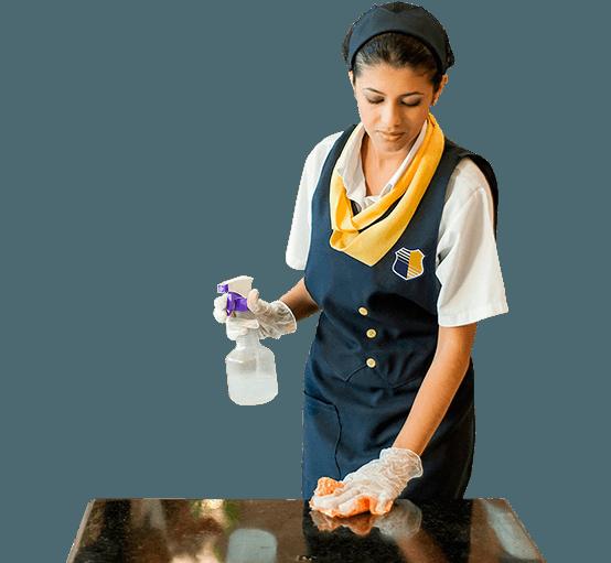 Limpeza e Terceirização de Serviços